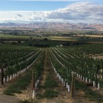 Judging panel announced for 2018 Idaho Wine Competition